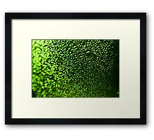 Abstract Macro #138 Framed Print