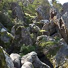 Hanging Rock (10) by kalaryder