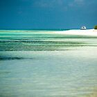 Beach Walk Maldives by Craig Ringland
