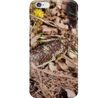 Australian Blue-tongued Lizard iPhone Case/Skin