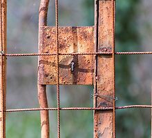 old iron gate by spetenfia