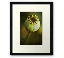 *plump* Framed Print