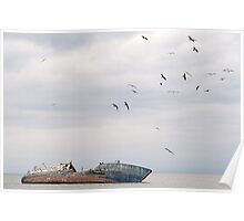Sea birds and the dead ship Poster
