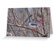 Titmouse Amid Red Berries Greeting Card