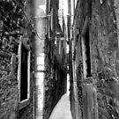 Narrow Alley by Josephine Pugh