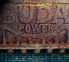 Buda Power by Susana Weber