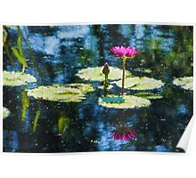Waterlily Impressions - Dreaming of Monet Gardens Poster