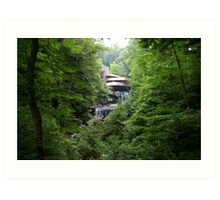 Falling Water, Pennsylvania Art Print