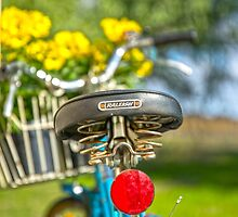 Old RALEIGH Bike Seat.. by mitpjenkeating