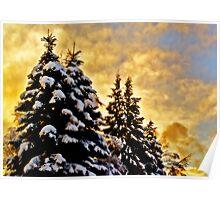 {heavy}snow Poster
