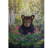 Whimsical Bear Cub Photographic Print