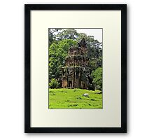 Khmer Ruin in the nature - Angkor, Cambodia. Framed Print