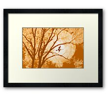 Witch's moon Framed Print