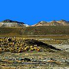 San Pedro de Atacama................Norte de Chile.   by cieloverde