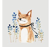 Fox and Flower Photographic Print