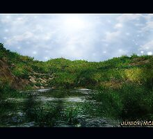 Enchanted Landscape  # 2 by Junior Mclean