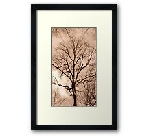 Circulatory Framed Print