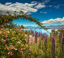 Lake Tekapo by Cornelia Schulz