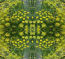 KALEIDOSCOPE ~ Fennel by tasmanianartist by tasmanianartist