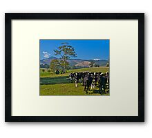 Expensive farmland at Mt Worth, Victoria Framed Print