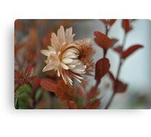 Una flor.............. Canvas Print