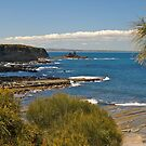 Summer at Eagles Nest, Inverloch, Victoria. by johnrf