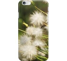 White among the grass iPhone Case/Skin