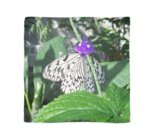 Rice Paper Butterfly Scarf