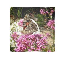 Painted Lady Butterfly Scarf