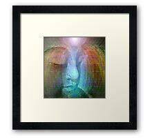 Rainbow buddha Framed Print