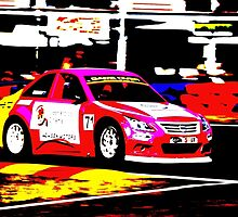 Aussie Racing Cars  by Christopher Houghton