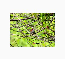 Red - Browed Finch Unisex T-Shirt