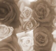 Vintage Style Roses by Melissa Park