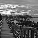 Boardwalking by Lawrie McConnell