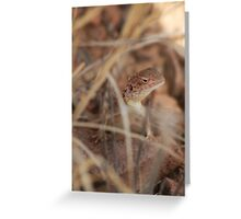 Dragon in the Grass Greeting Card