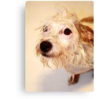 Bath Time Canvas Print