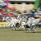The Bullock Cart Race by RajeevKashyap