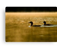 Misty Morning On The Lake Canvas Print