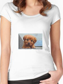 Puppy outside Women's Fitted Scoop T-Shirt