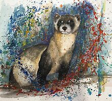 Asher's Ferret - Mustela Nigripes by Morgan Campbell