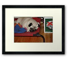 Ping being cute Framed Print