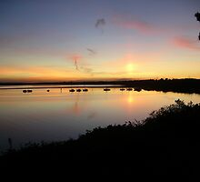 Dorset Sunset by Catherine Hamilton-Veal  ©