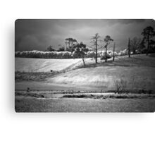 Lost in Gippsland Canvas Print