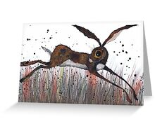 DASHING HARE Greeting Card