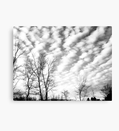 Sky Trails Canvas Print