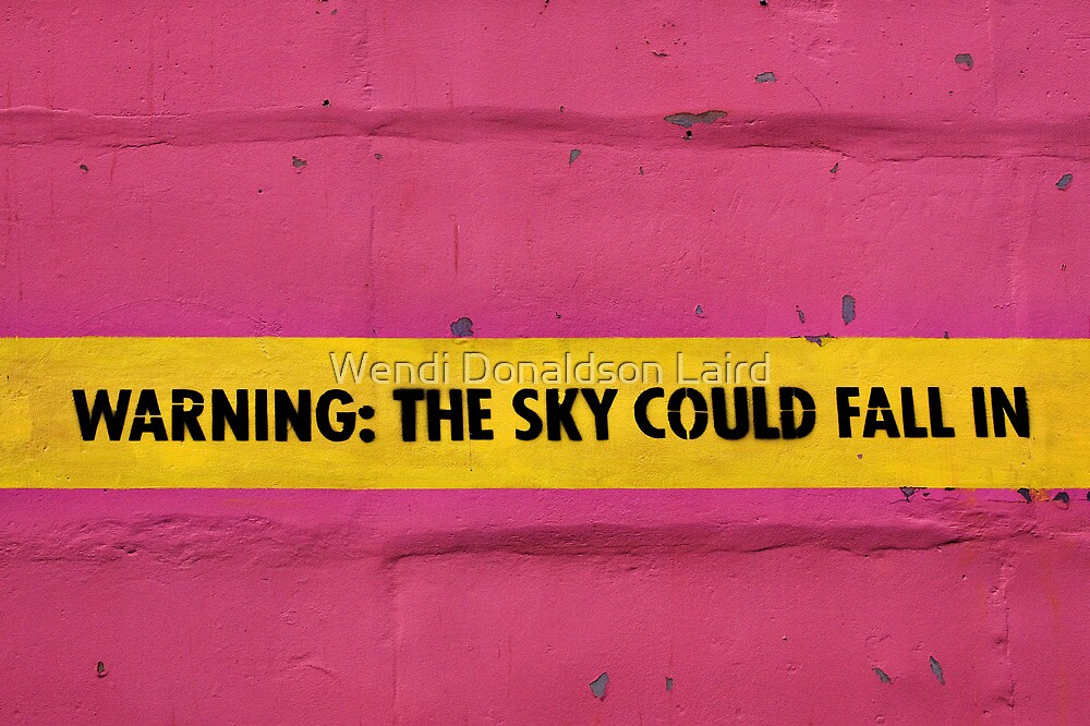 BEWARE!  Falling Sky! by Wendi Donaldson Laird