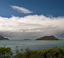 Port Stephens by Michael Howard