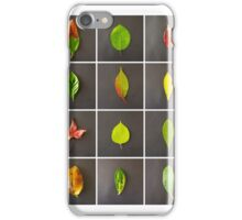 Leaves Typology iPhone Case/Skin
