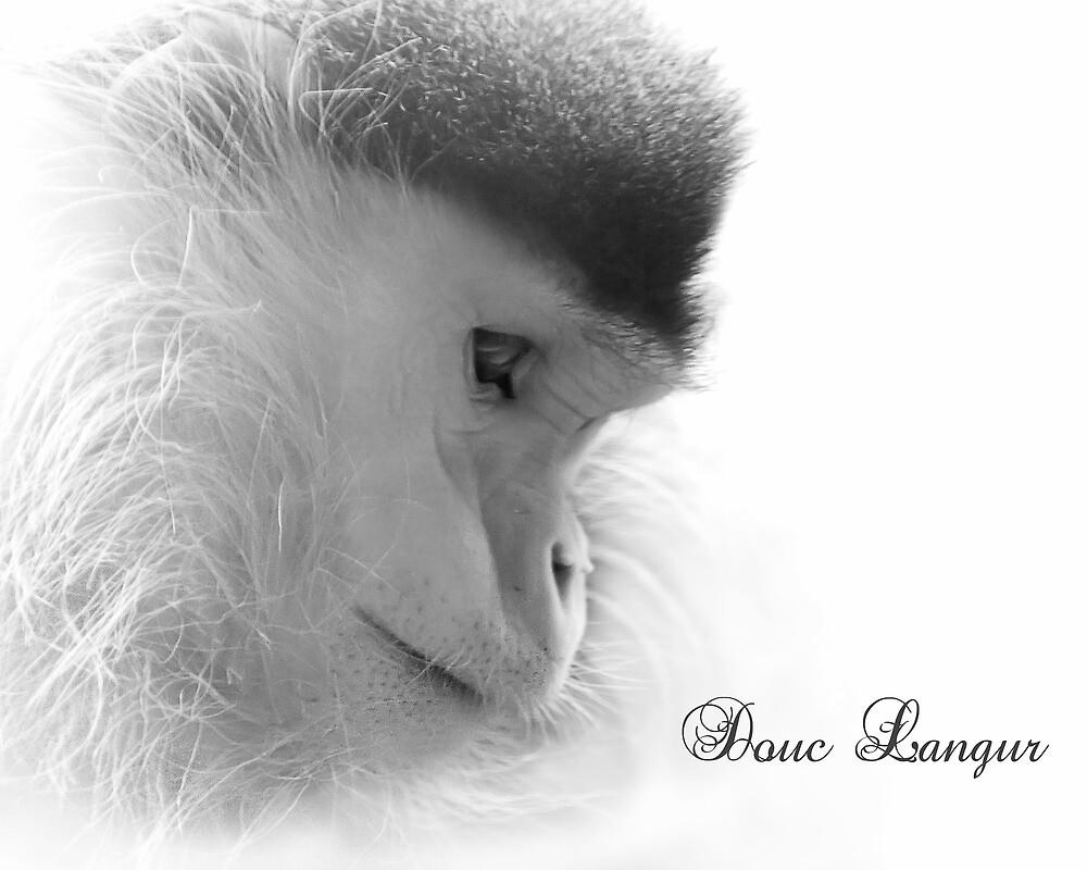 Douc Langur by Cheri  McEachin