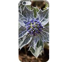 Sea Holly in fractalius iPhone Case/Skin
